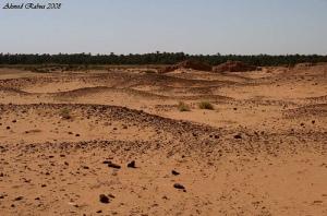Sudan independence referendum